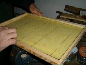 cours d'apiculture syndicat limoges