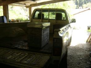 cousr au rucher du syndicat apicole du limousin
